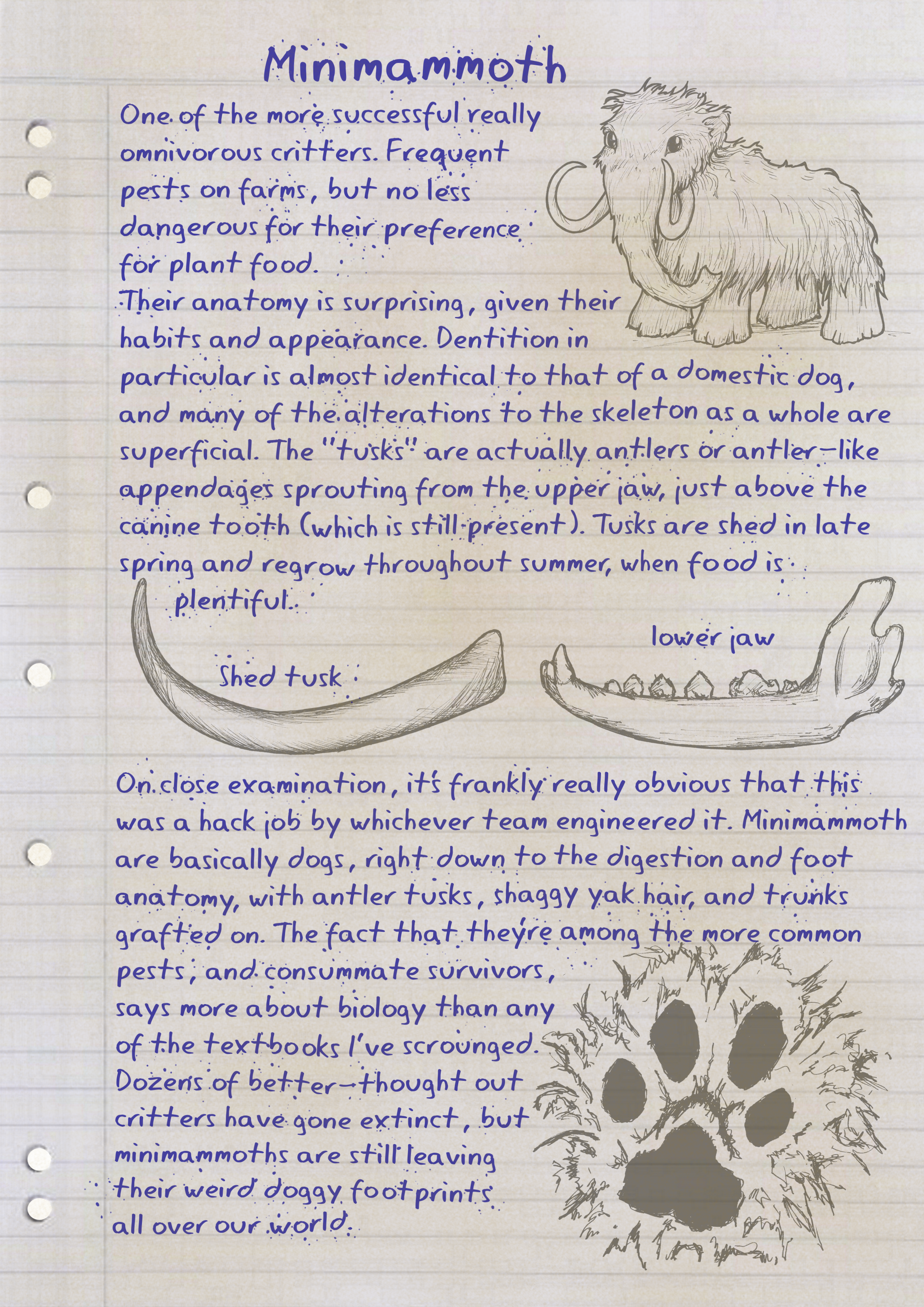 Notes on minimammoths, with illustrations. Click for full transcription.